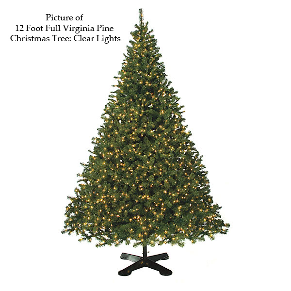 Best-selling Full Virginia Pine Christmas Tree Product Photo