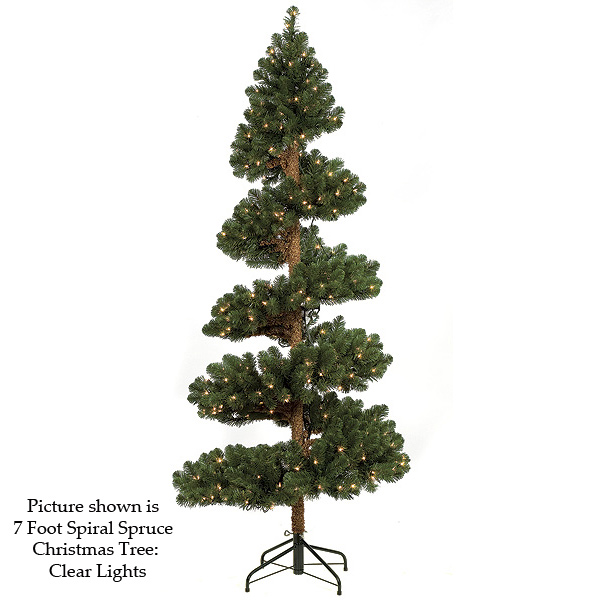 View Spiral Spruce Tree Product Photo