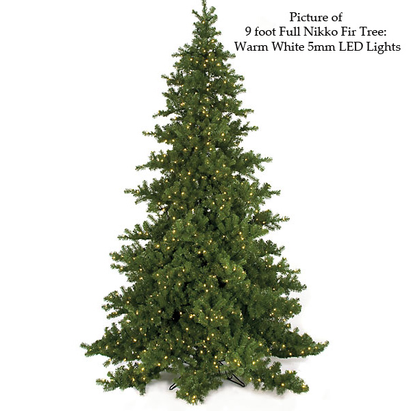 Popular Full Nikko Fluff Free Fir Tree Product Photo
