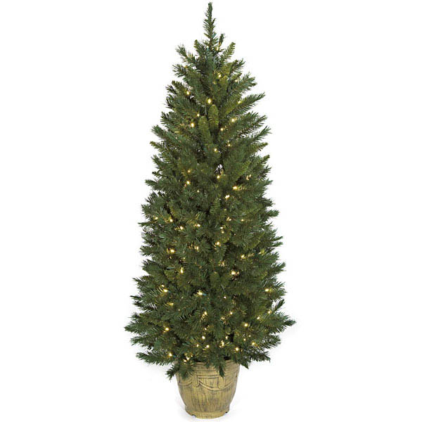Superb Potted Mixed Pine Tree Clear Mm Leds Product Photo