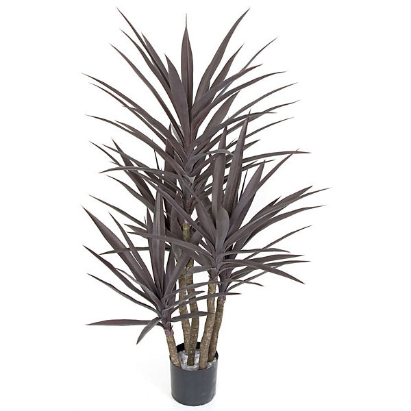 Stylish Burgundy Plastic Yucca Tree Limited Uv 11 2451