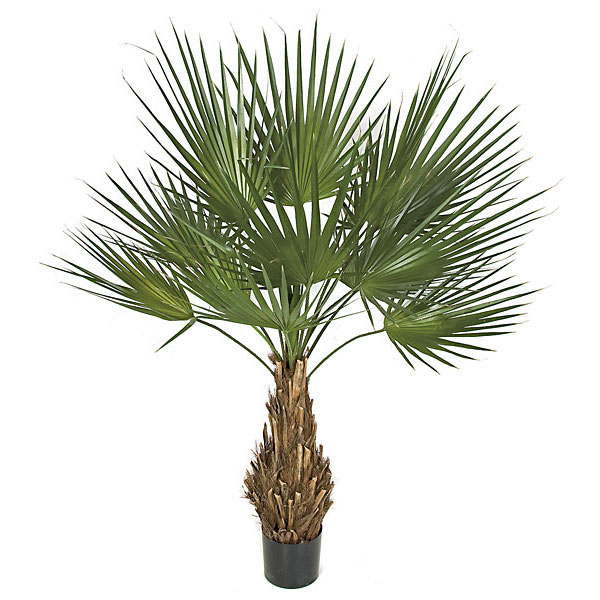 Special Artificial Washintonia Palm Natural Trunk Potted 17 1087