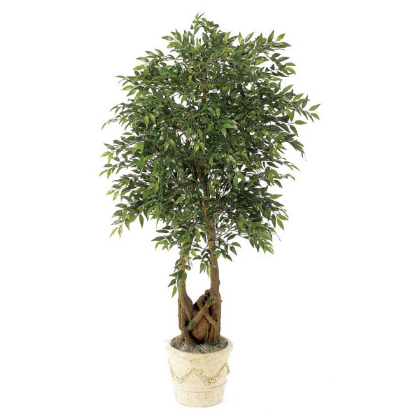 Choose Silk Smila Tree Natural Trunks Potted 5 2475