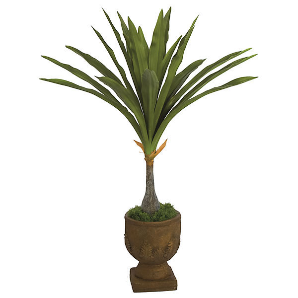 Learn more about Artificial Large Leaf Dragon Tree Potted Product Photo
