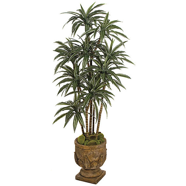 Ultimate Silk Dracaena Warneckii Tree Natural Trunks Potted 21 1557
