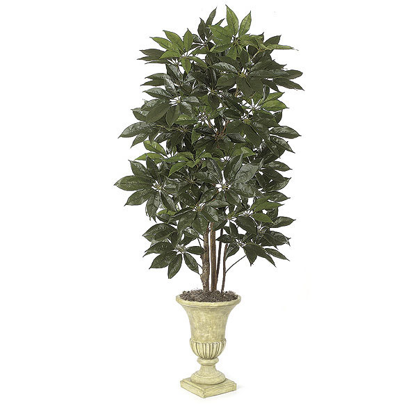 Trustworthy Artificial Schefflera Tree Natural Trunks Potted 15 1391
