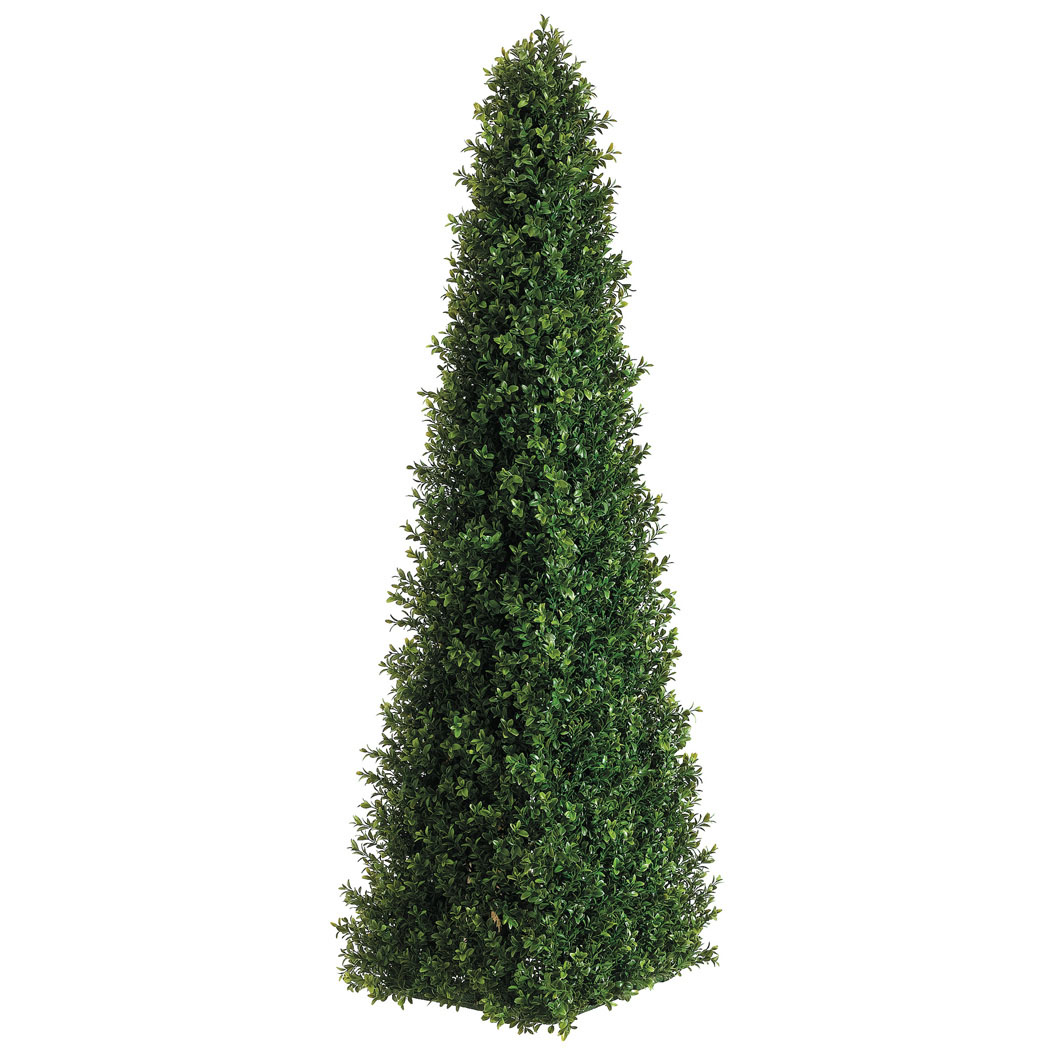 4 Foot Triangular Boxwood Topiary: Set Of (2)