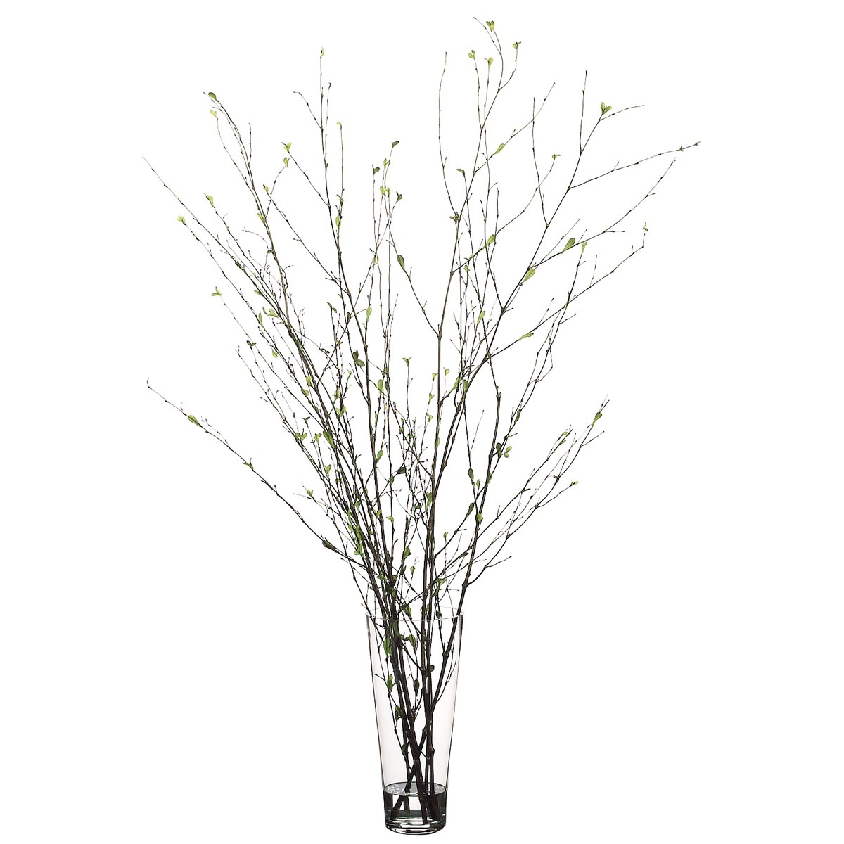 52 Inch Branch Arrangement In Glass Vase Wf2495 Gr Br