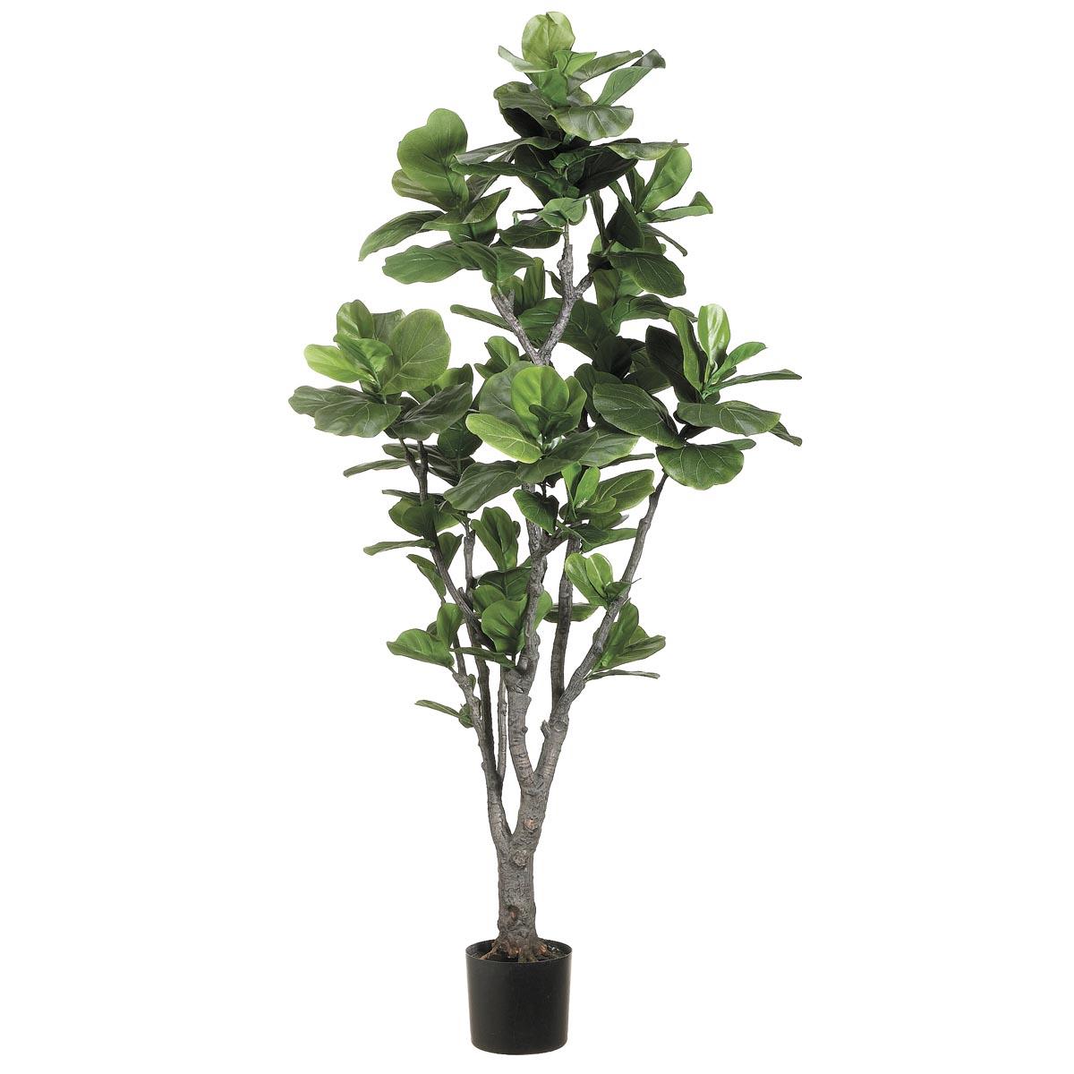 Design Fiddle Leaf Fig Tree Potted 23 578