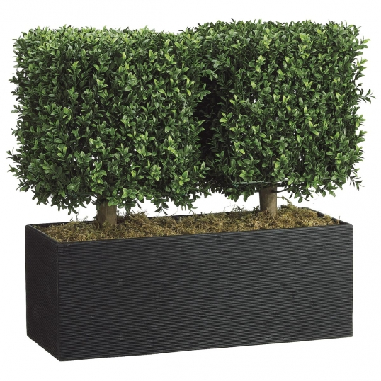 24 inch Boxwood Topiary in Rectangular Bamboo Container | WP7668-GR