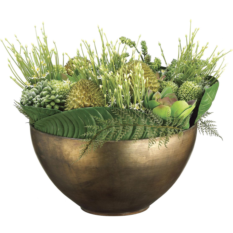 Select In-Durian-Allium-Echeveria-Sedum-Succulents-Metal-Container Product Picture 739