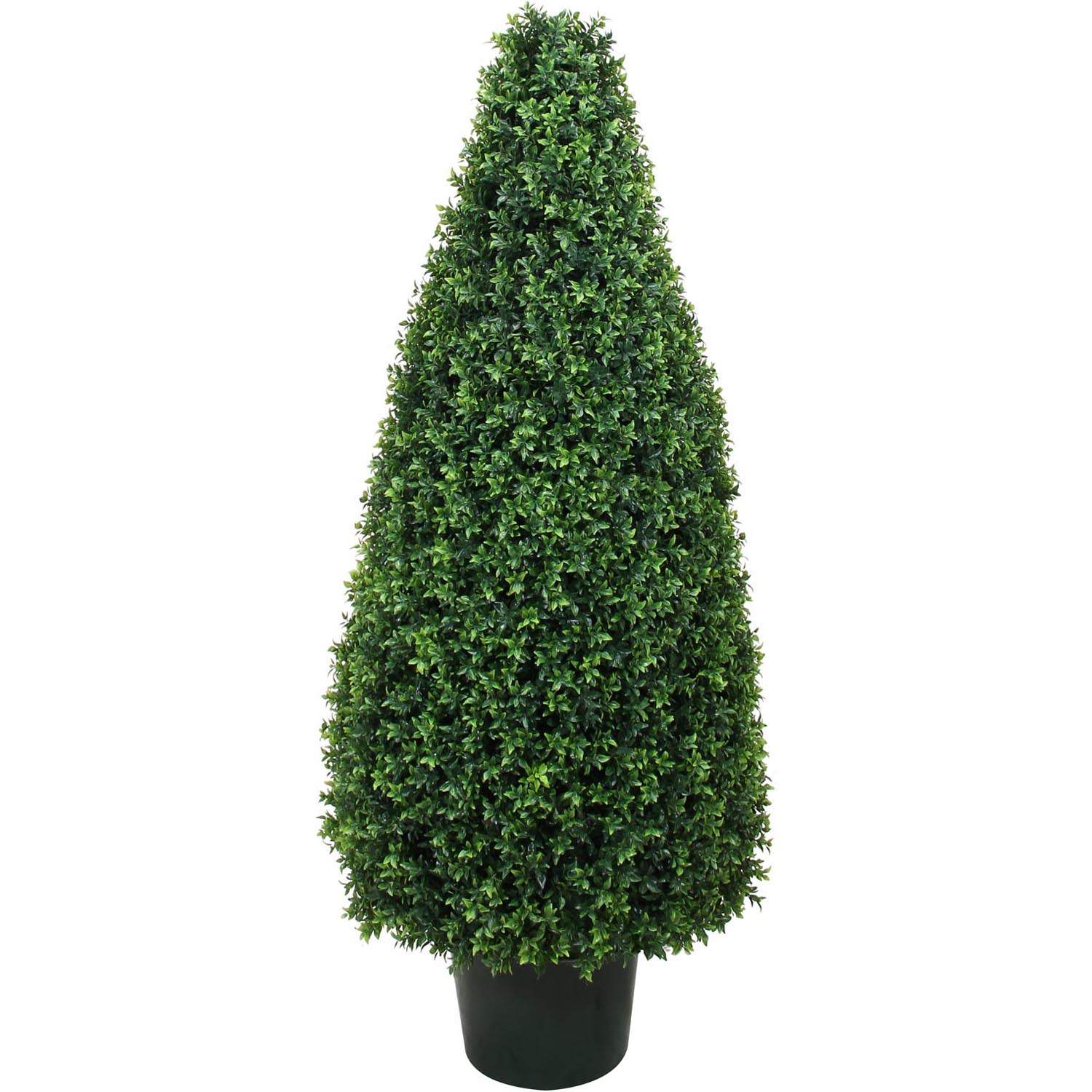 30 Inch Uv Protected Basil Cone Topiary: Potted