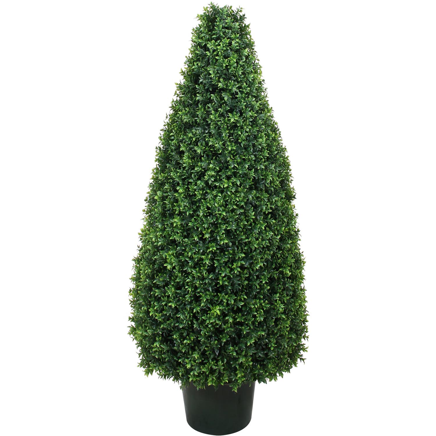 54 Inch Uv Protected Basil Cone Topiary: Potted