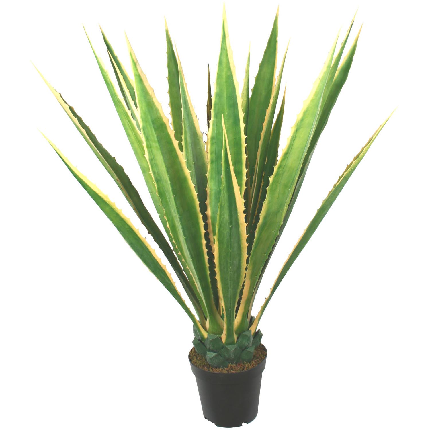 48 Inch Outdoor Potted Giant Yellow/green Agave Plant: Limited Uv (set Of 2)