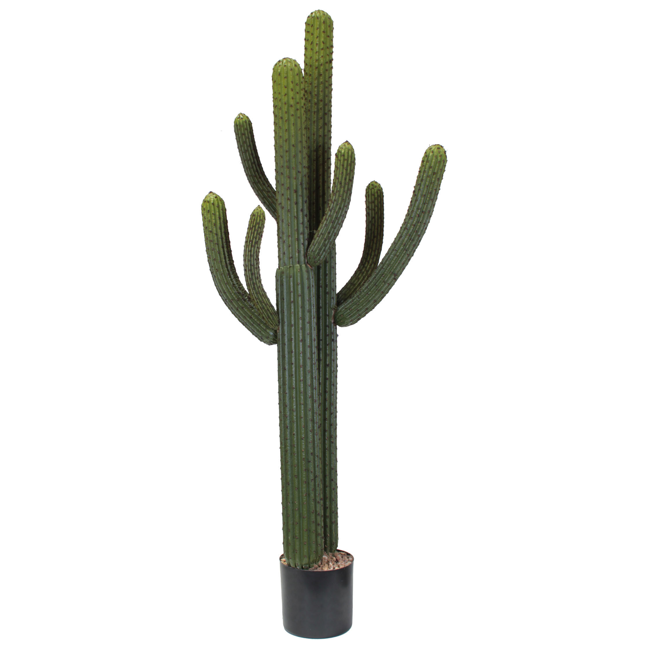 5.5 Foot Artificial Whisker Cactus: Potted (set Of 2)