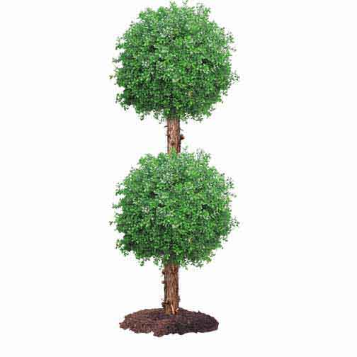 Tall Outdoor Artificial Double Boxwood Ball Topiary W