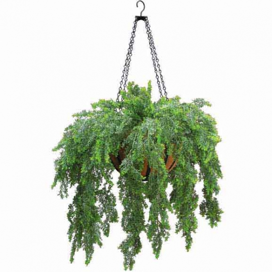 Outdoor Artificial Asparagus Fern In Decorative Hanging Basket With Chain