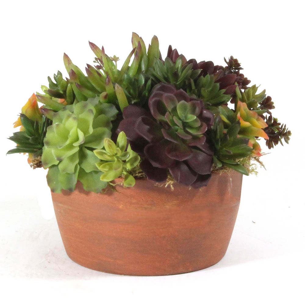 New Artificial Succulents Aged Clay Pot Product Photo