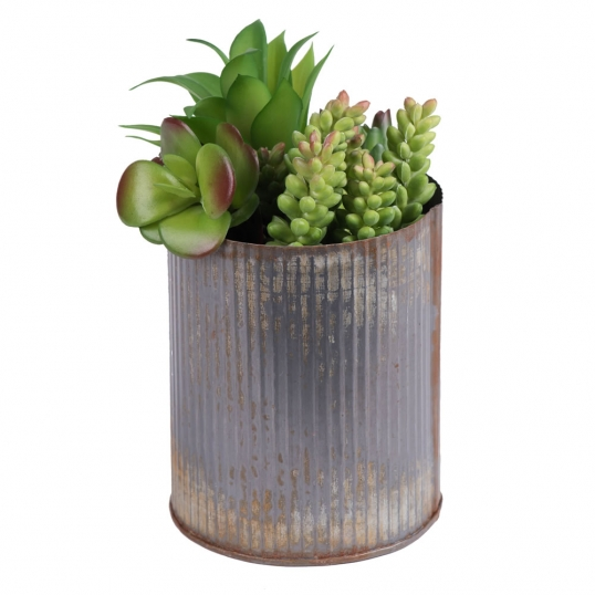 9 Inch Rustic Tin Vase With A Variety Of Succulents F12202