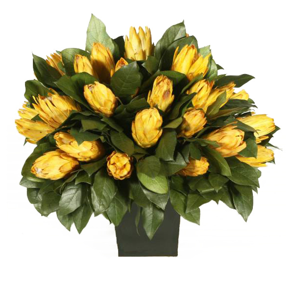 Outstanding Preserved Protea Arrangement Urn Product Photo