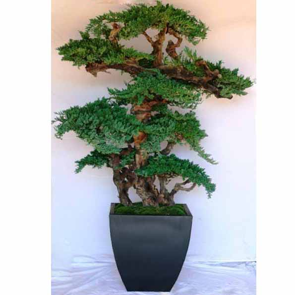 artificial bonsai trees | indoor fake bonsai tree