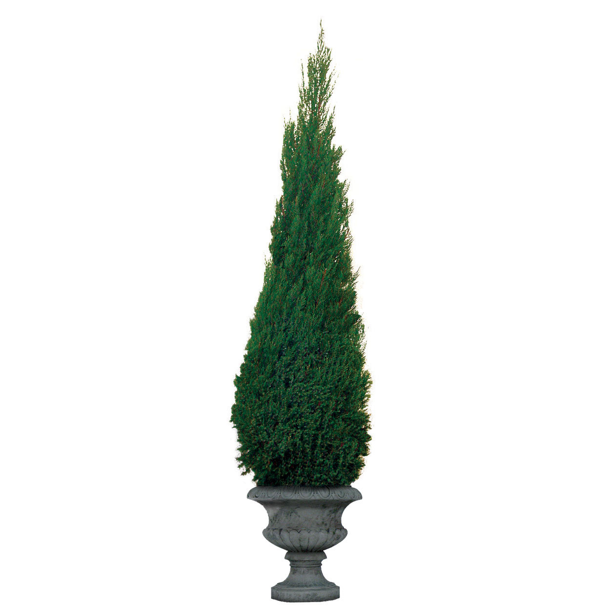 Artificial Christmas Trees Tabletop