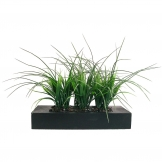 Great Laura Ashley Artificial Grass In Contemporary Small Wood Planter