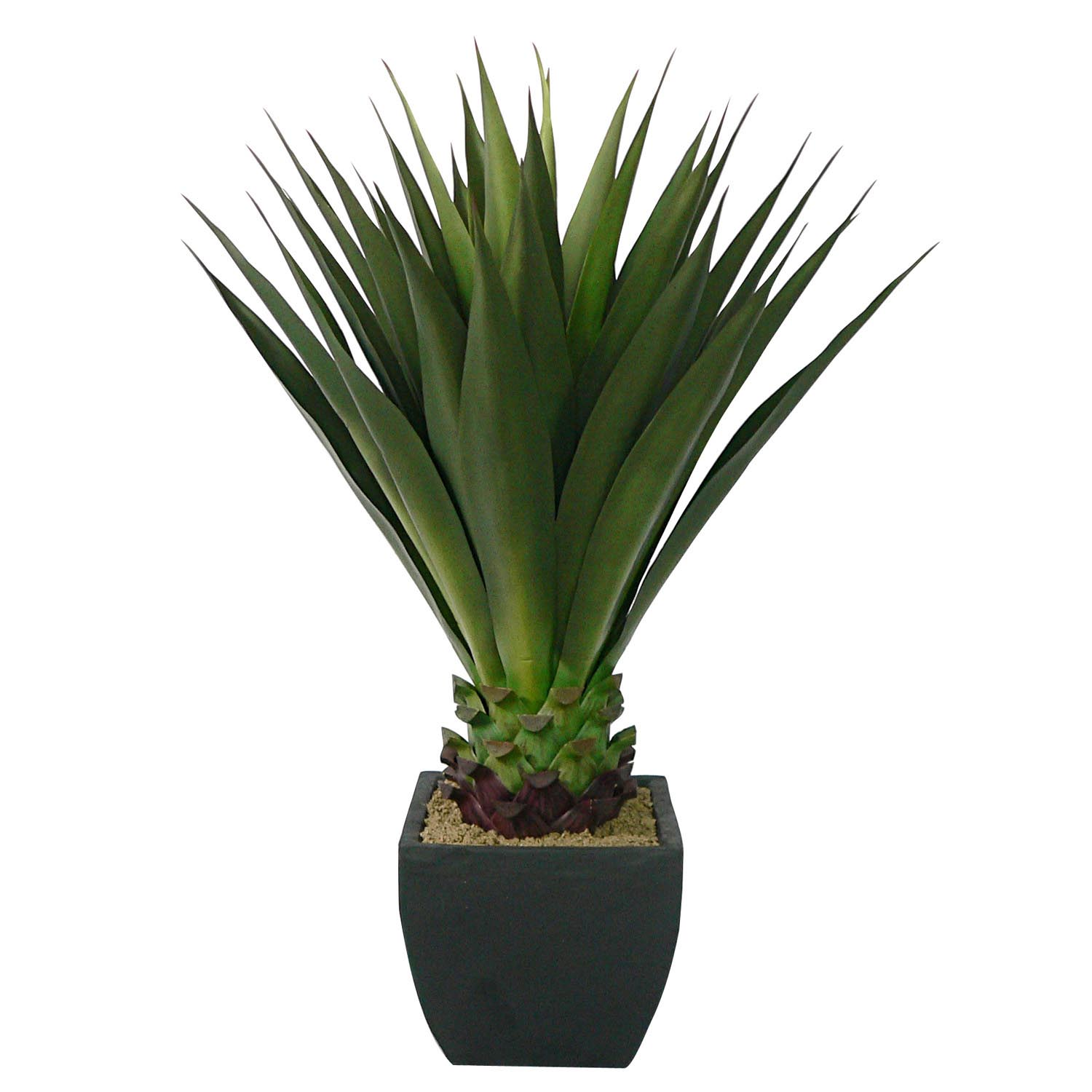 Select Giant-Aloe-Plant-Square-Planter Product Picture 2390