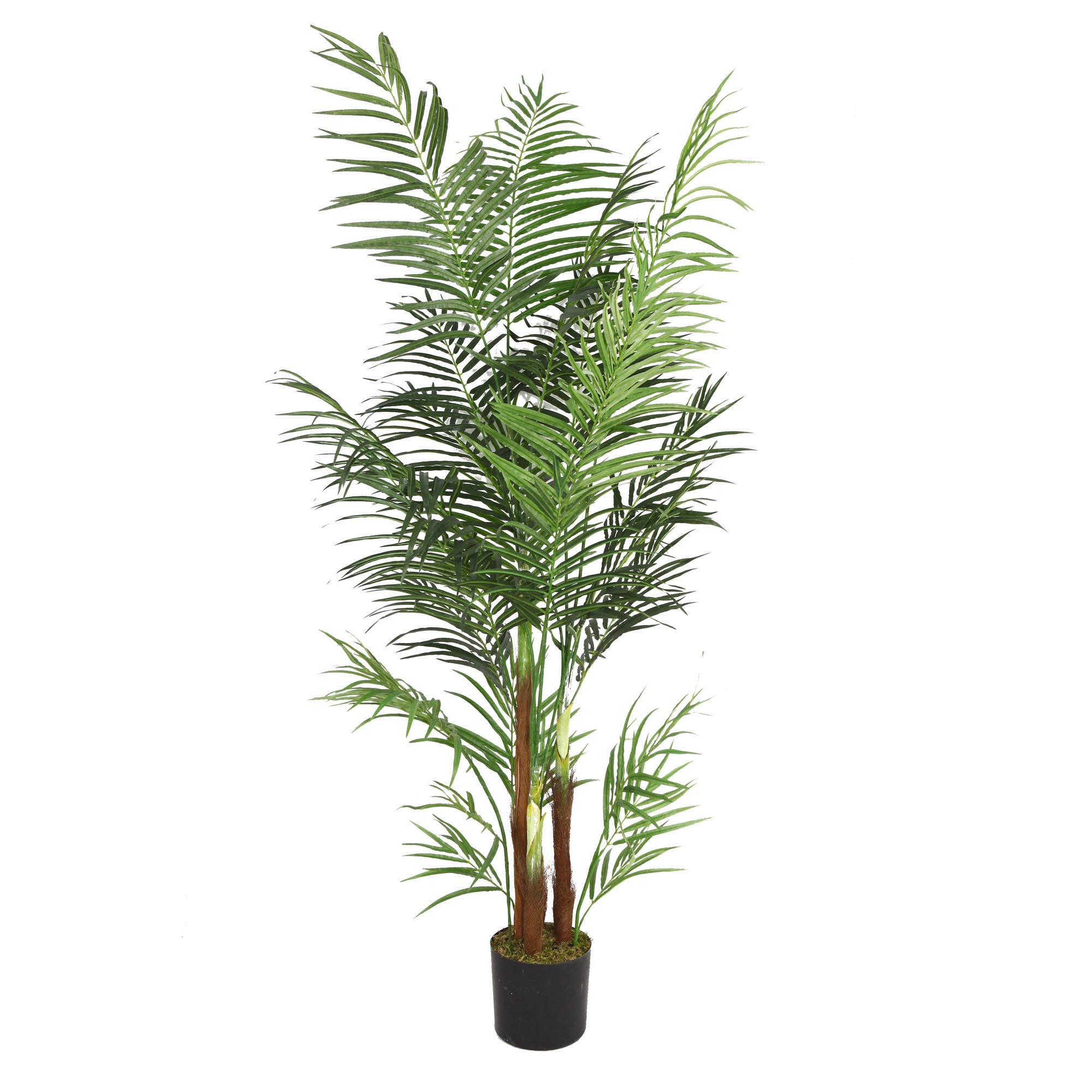 Laura ashley artificial areca palm tree vhx108 for Pictures of areca palm plants