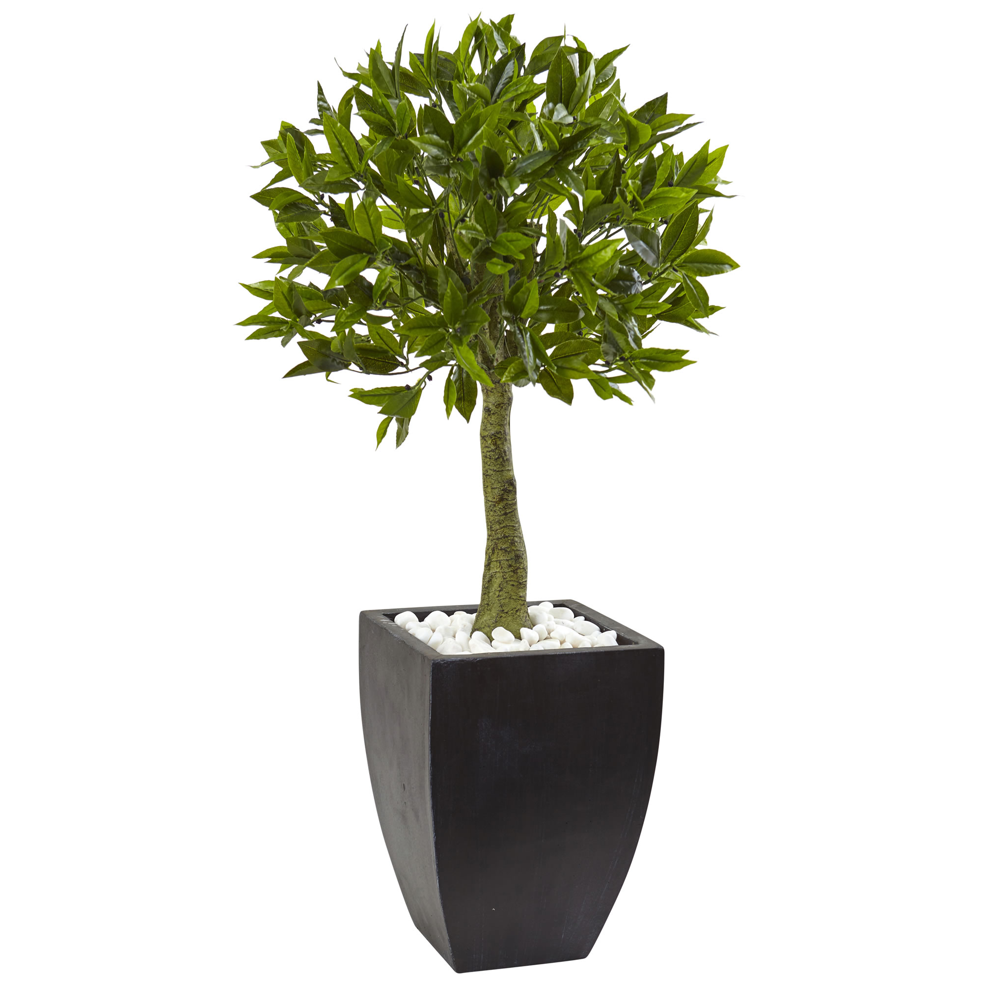 Magnificent Bay Leaf Topiary Wash Planter Limited Uv Protection Product Photo