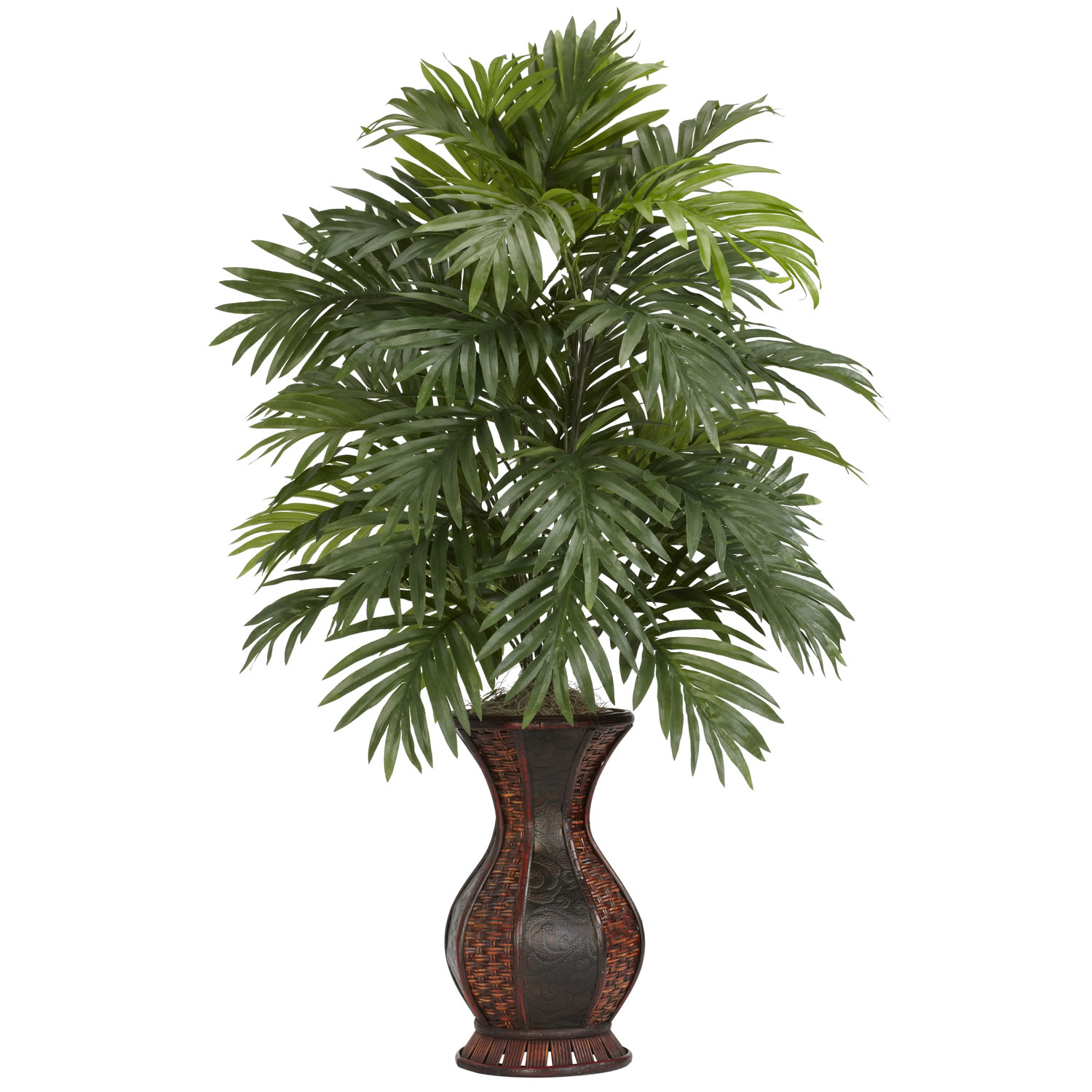 37 inch areca palm in urn 6661 for Pictures of areca palm plants