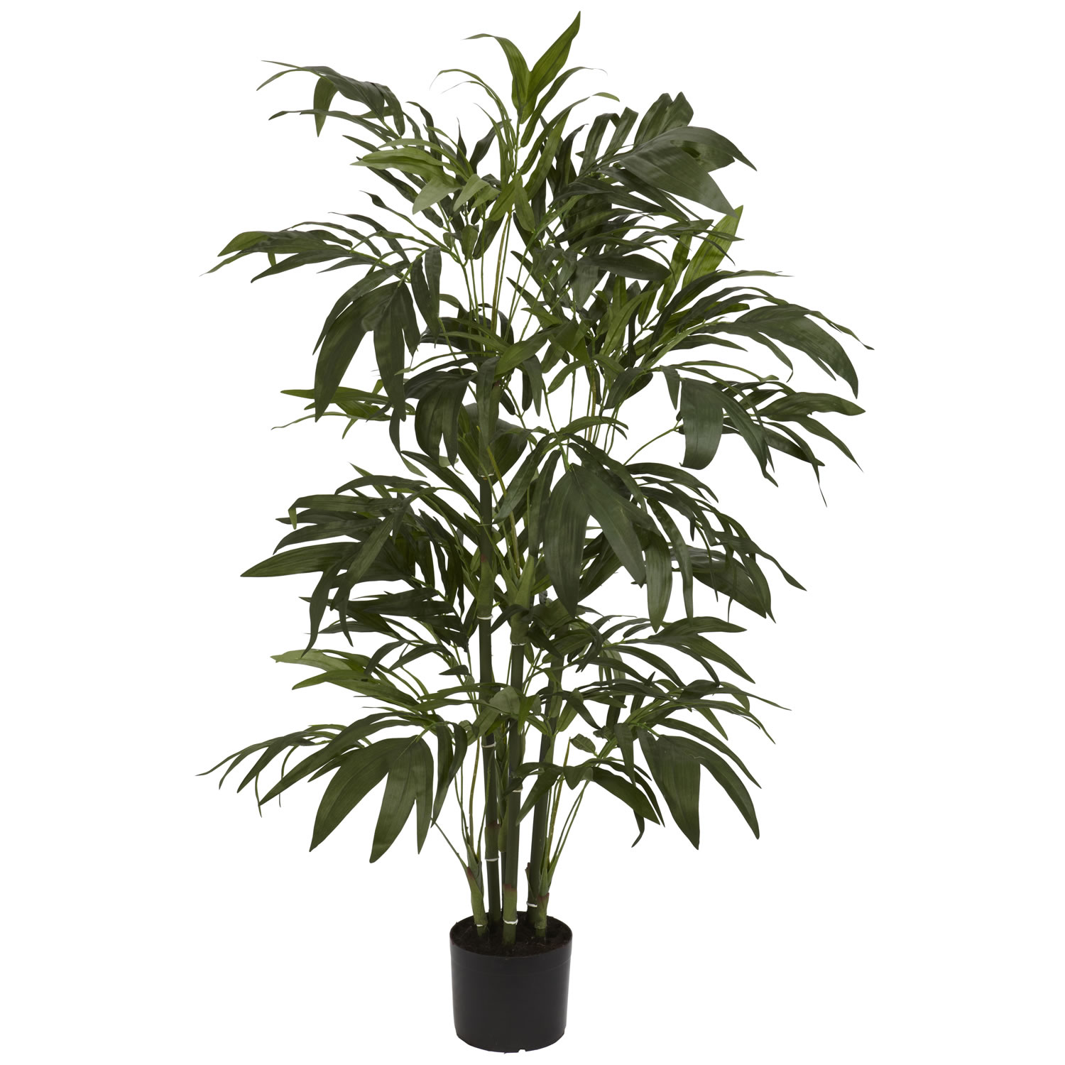 4 Foot Bamboo Palm Tree Potted 5327