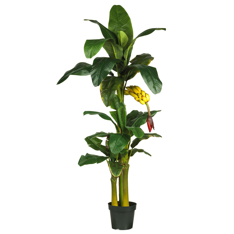 Artificial Banana Trees | Silk, Fake Banana Palm Tree
