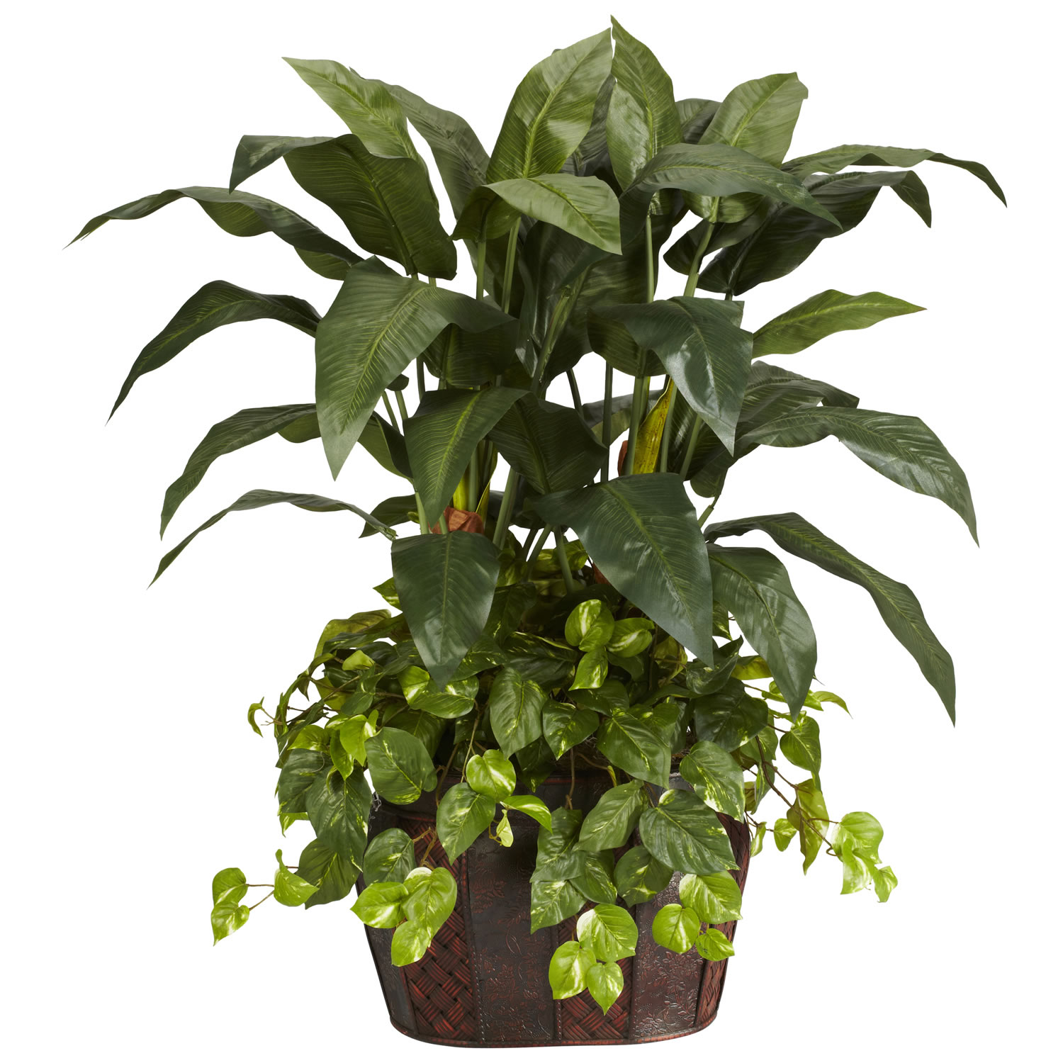 High-class Double Bird Paradise Pothos Decorative Container Product Photo