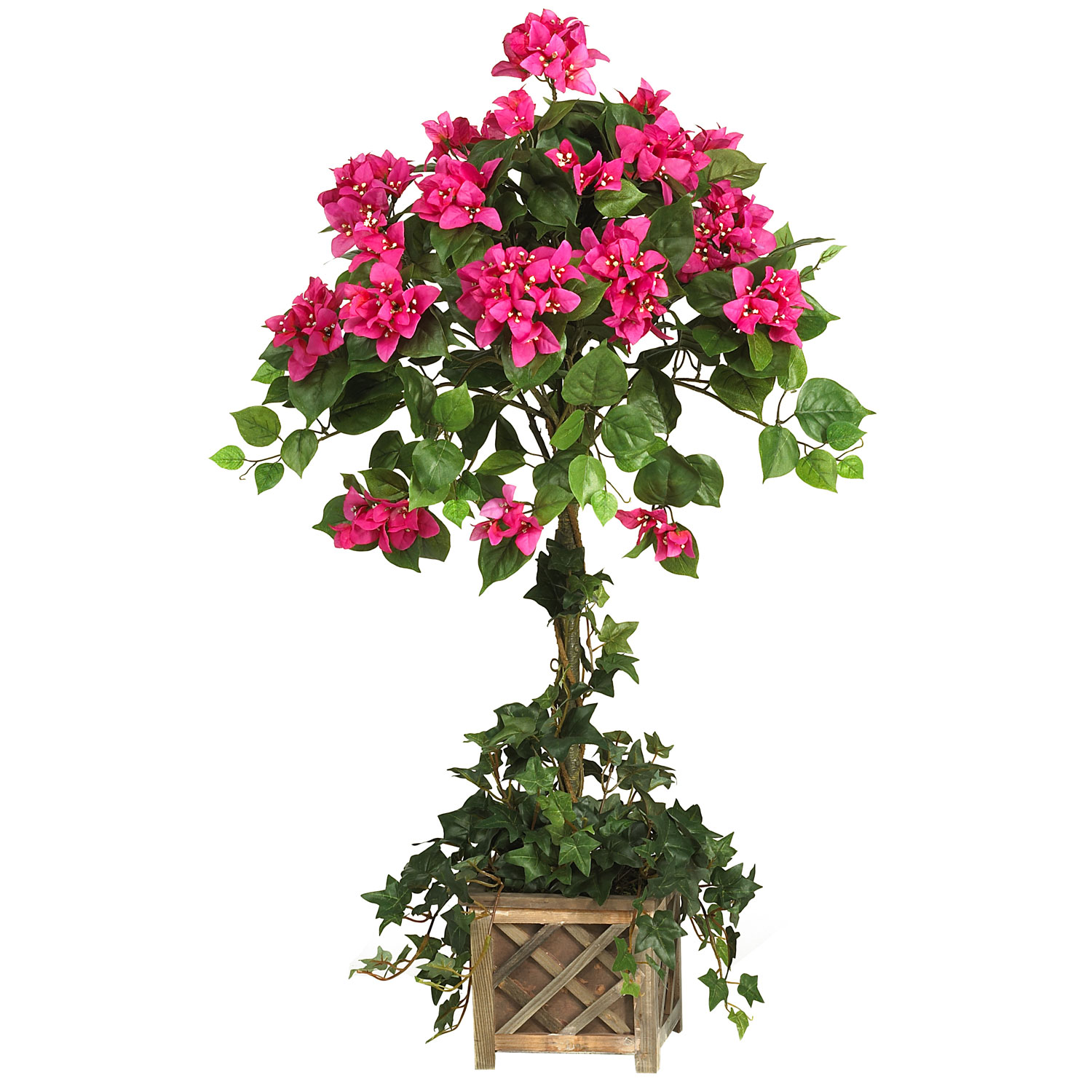 34 inch bougainvillea topiary in wood box 5227. Black Bedroom Furniture Sets. Home Design Ideas