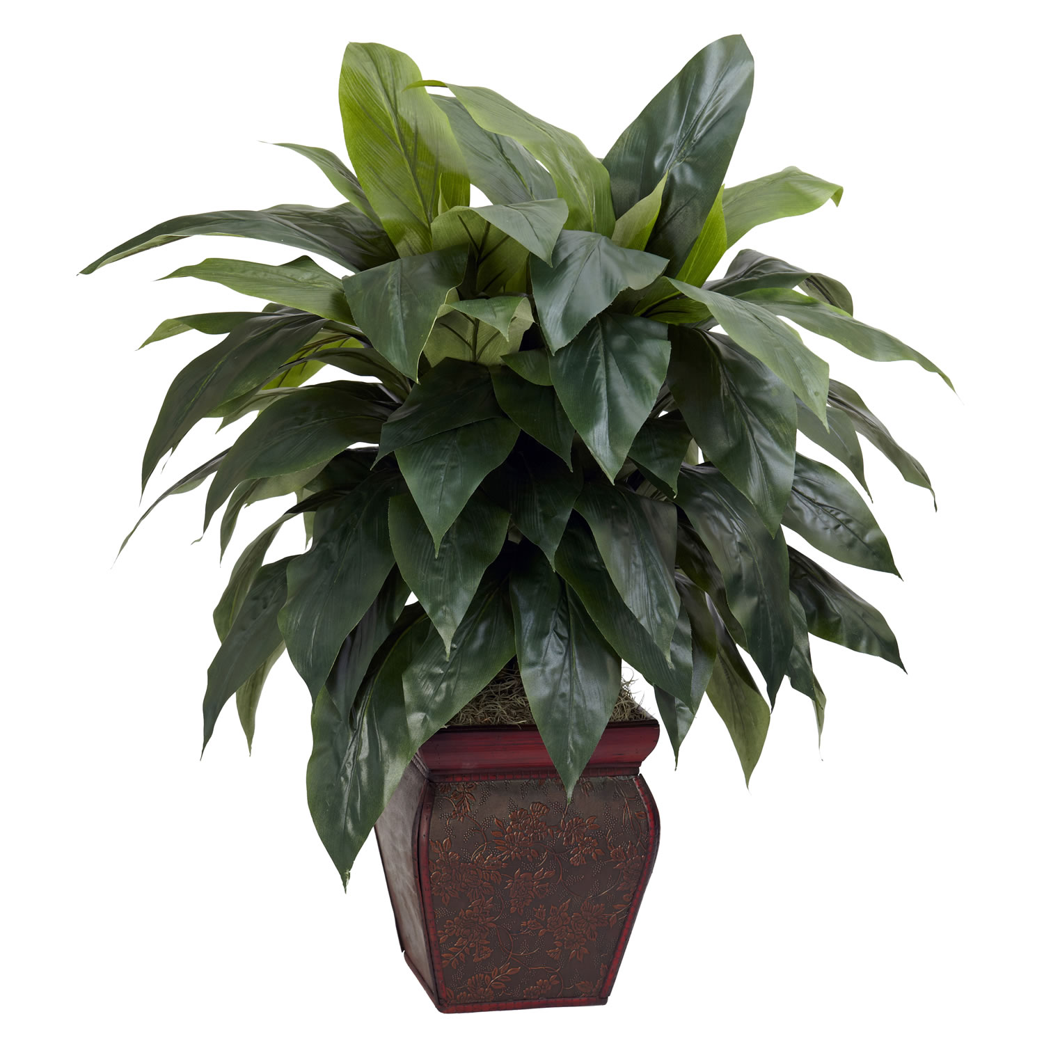35 inch cordyline in decorative vase 6688 for Decorative plants for garden