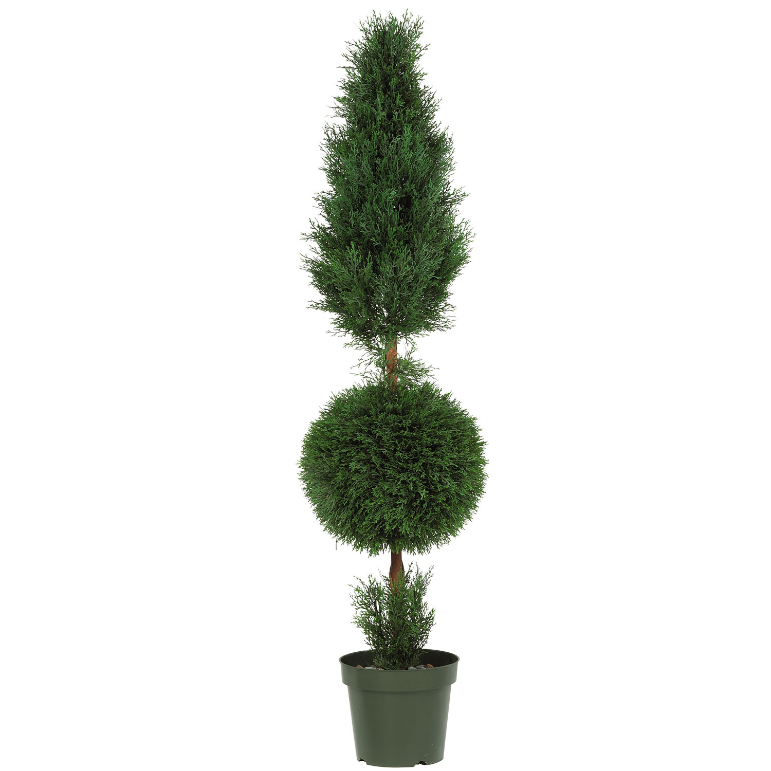 High-class Outdoor Cypress Ball Cone Topiary Potted Product Photo