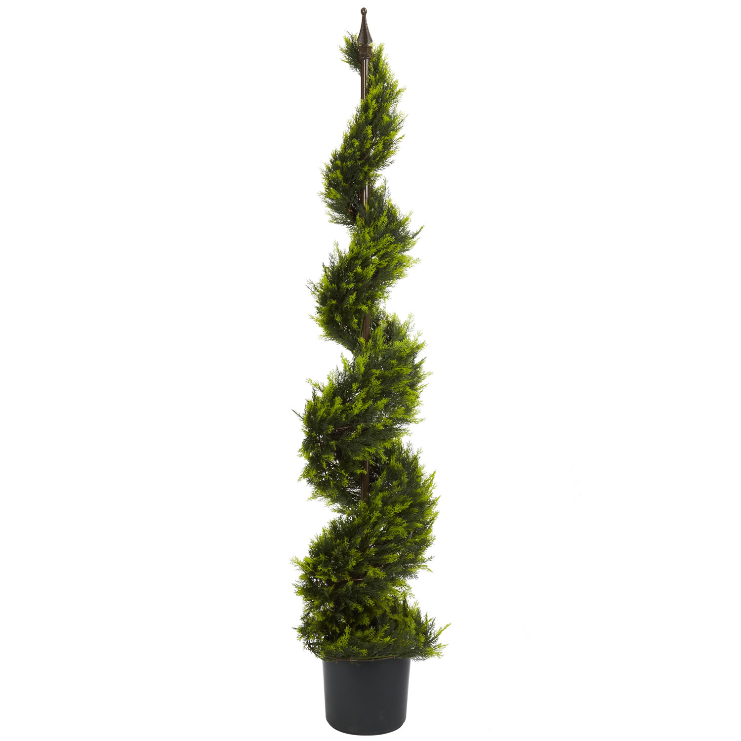 5 Foot Cypress Spiral Topiary With Finial Potted 5325