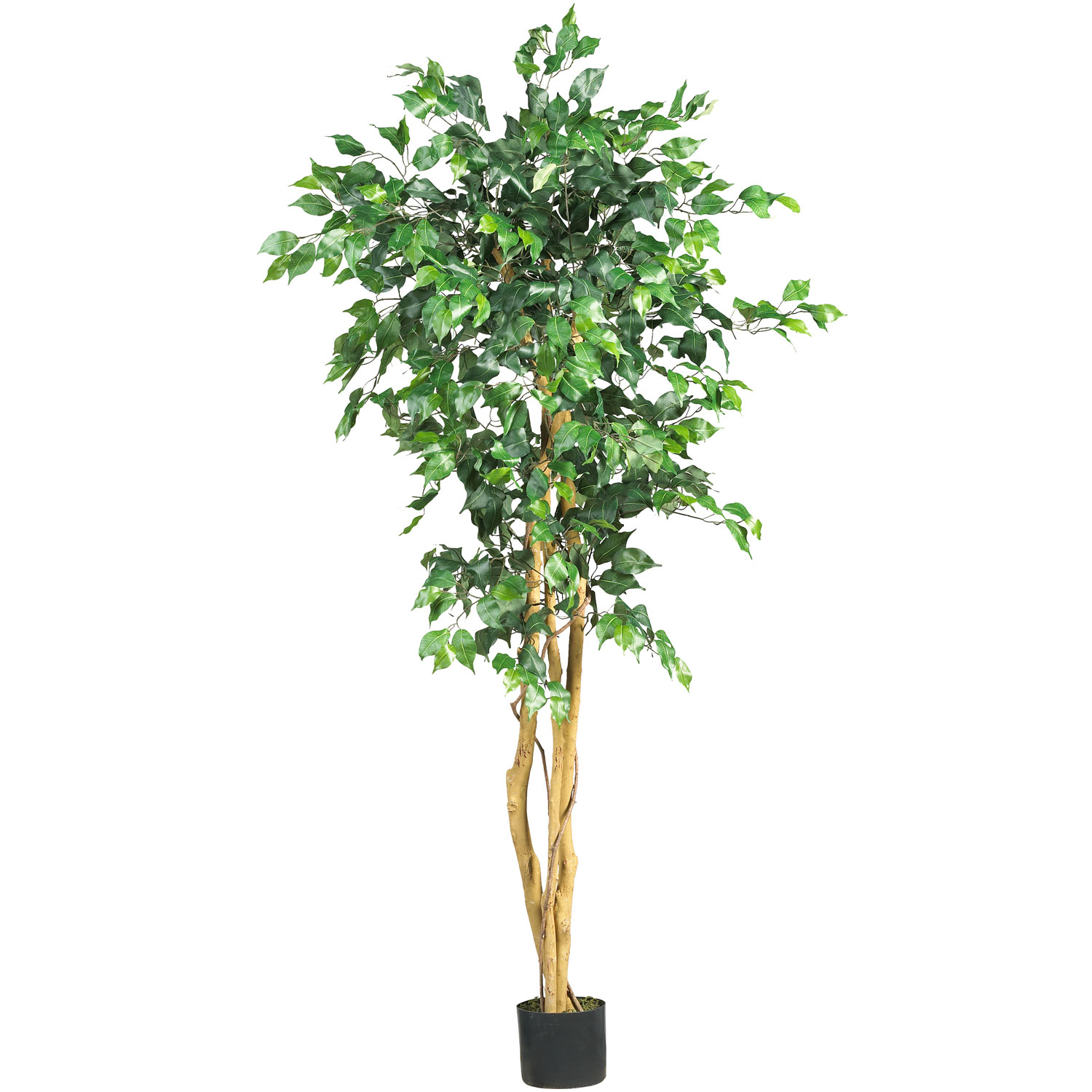 5 Foot Ficus Tree Potted 5208 Nearly Natural