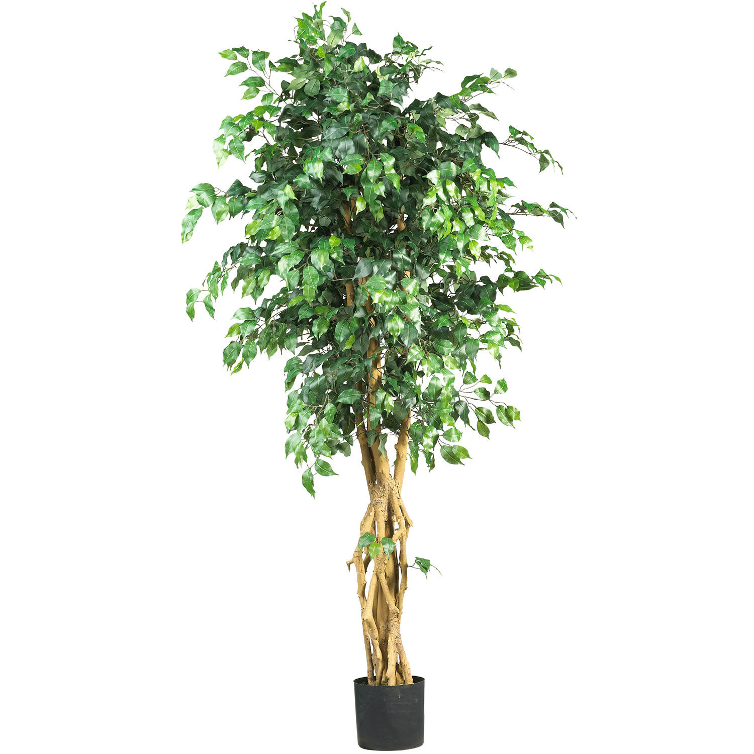 plants and trees 6 foot palace style ficus tree potted 5216 nearly natural