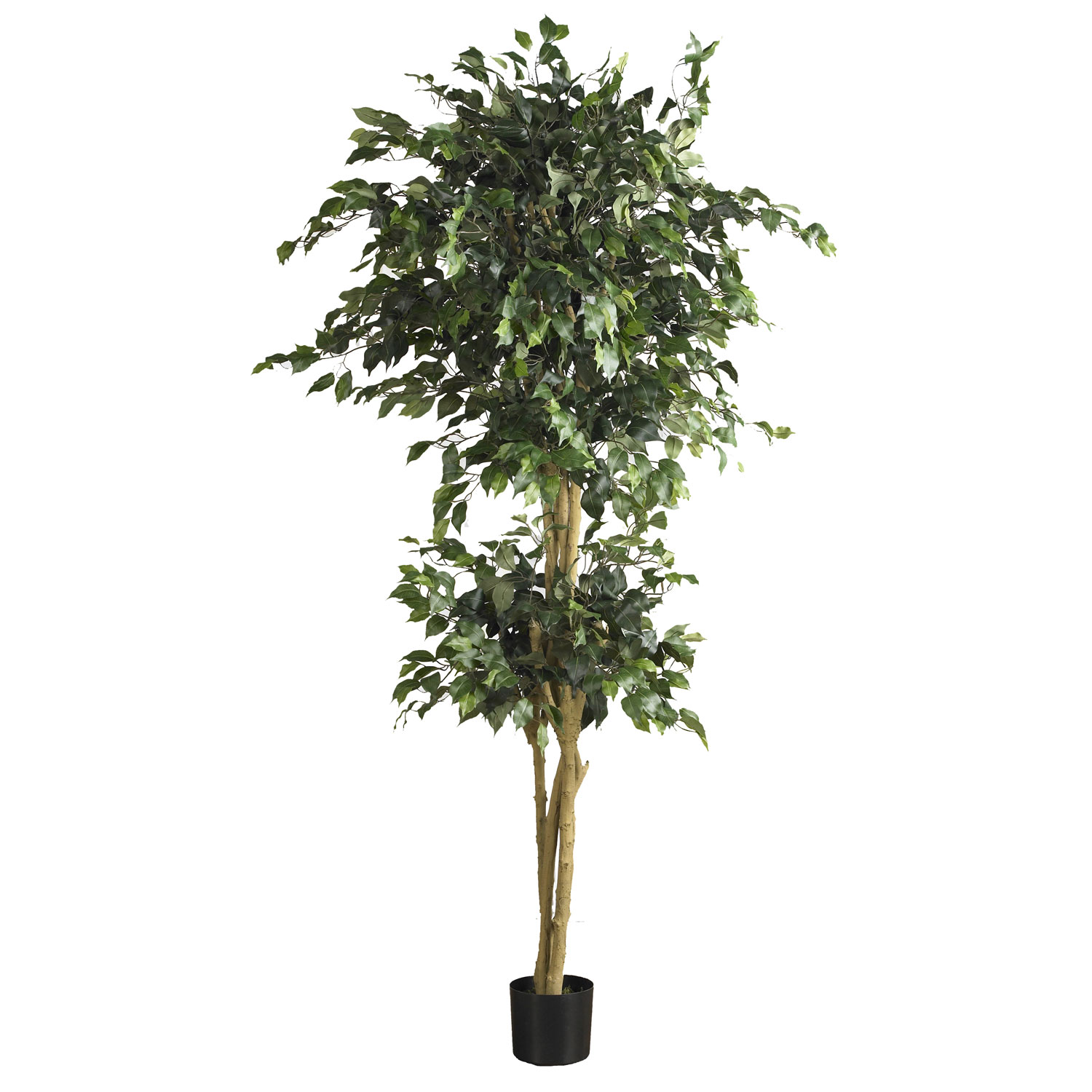 Foot double ball ficus tree potted 5268 nearly natural