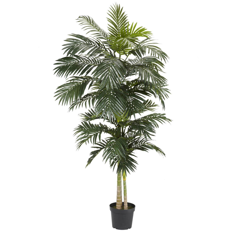 Deals golden palm tree