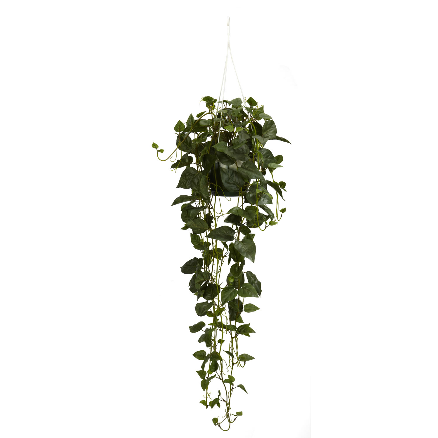44 inch philodendron hanging basket | 4762
