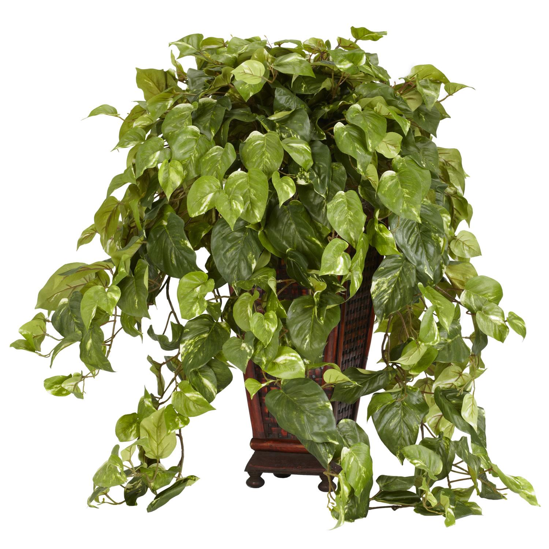 30 Inch Vining Pothos In Decorative Vase 6703
