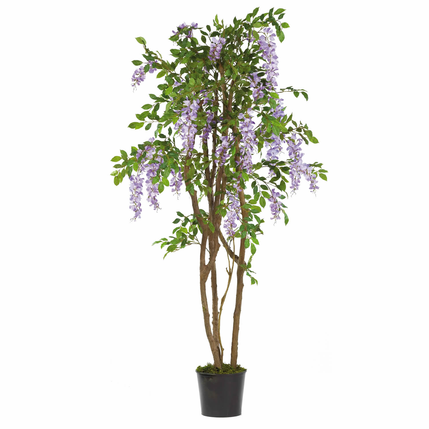 5 foot wisteria tree: potted | 5015-pp Artificial Silk Trees