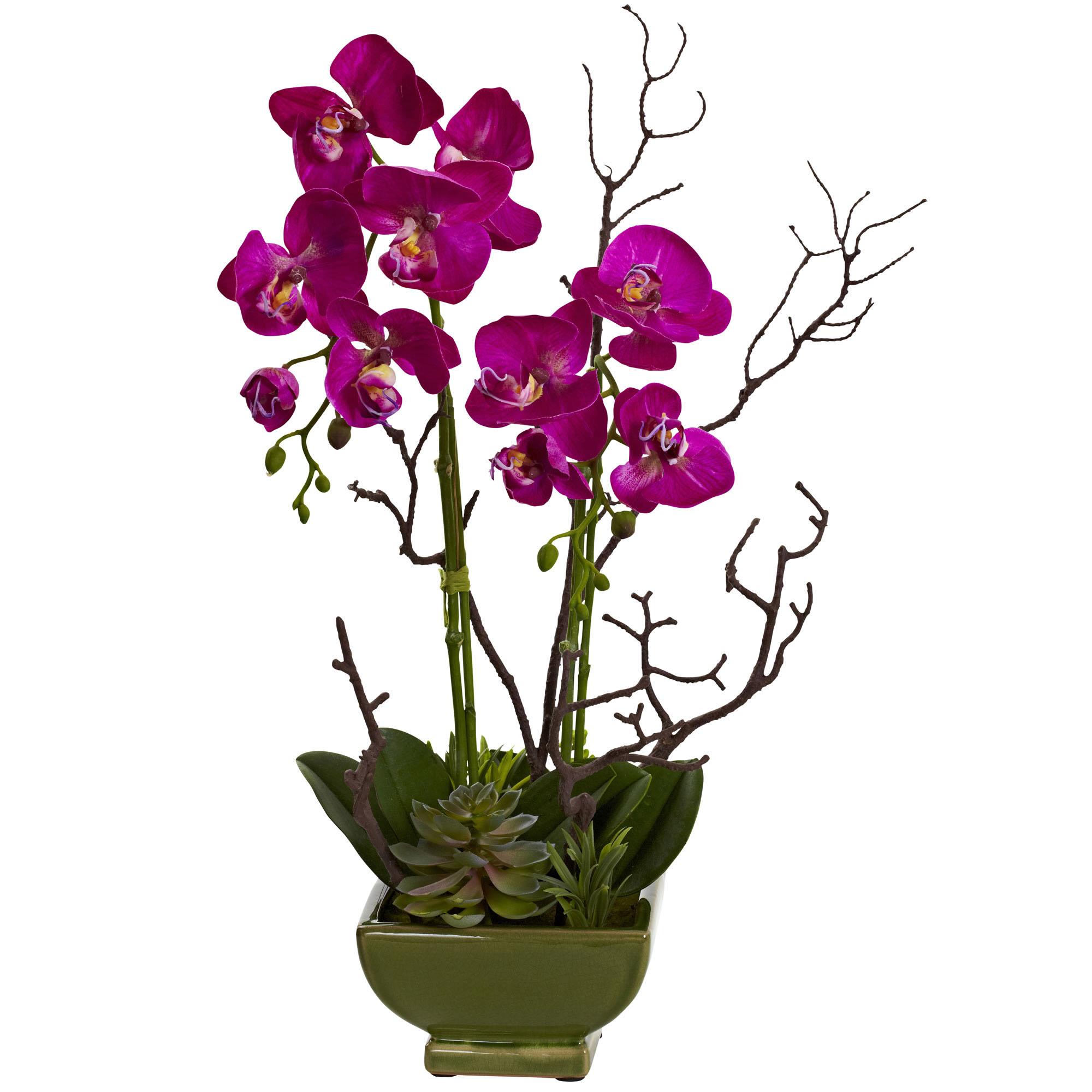 21 inch indoor silk orchid succulent arrangement in green closeup image dhlflorist Gallery