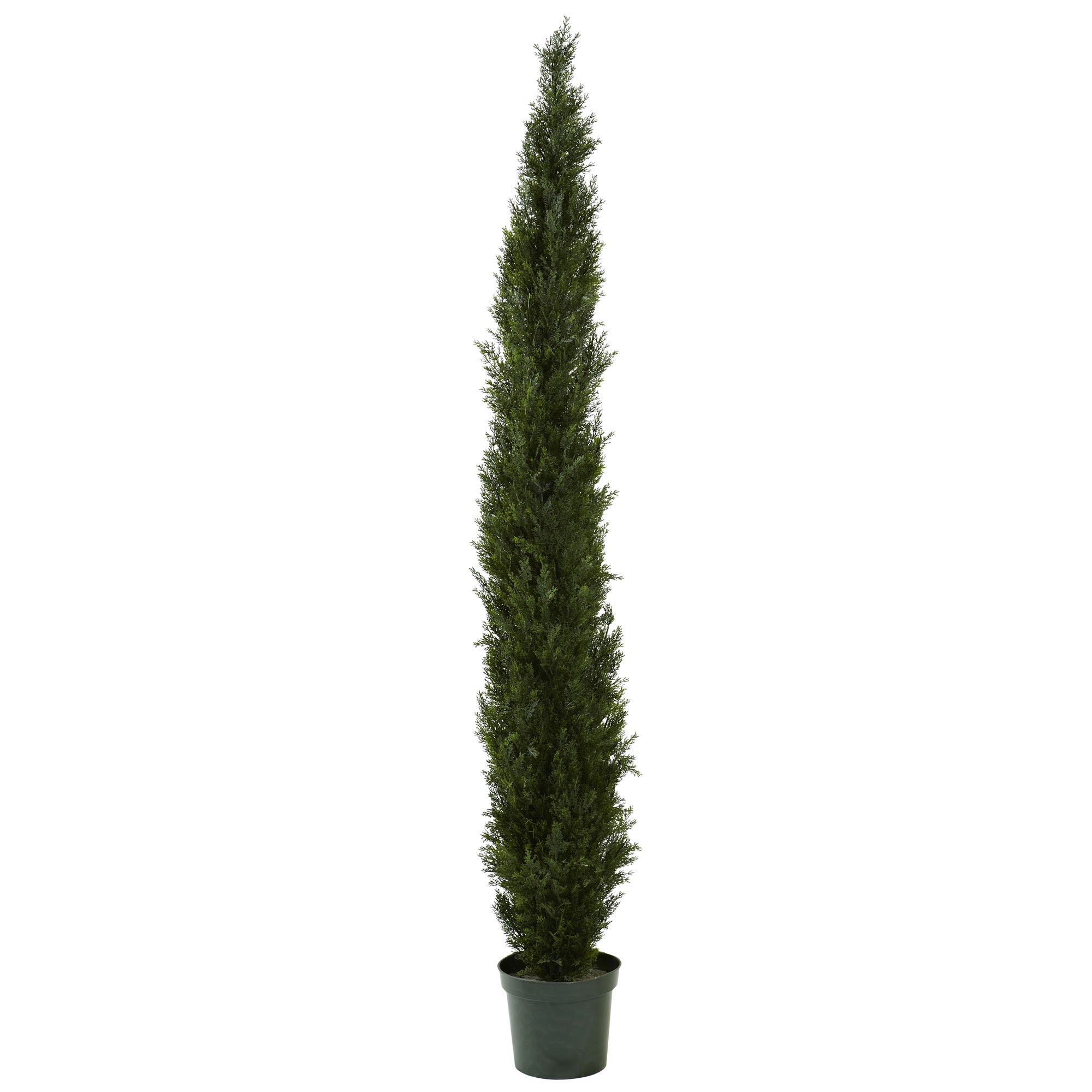 High-class Slim Cedar Pine Tree Potted Not Uv Protected  Product Photo