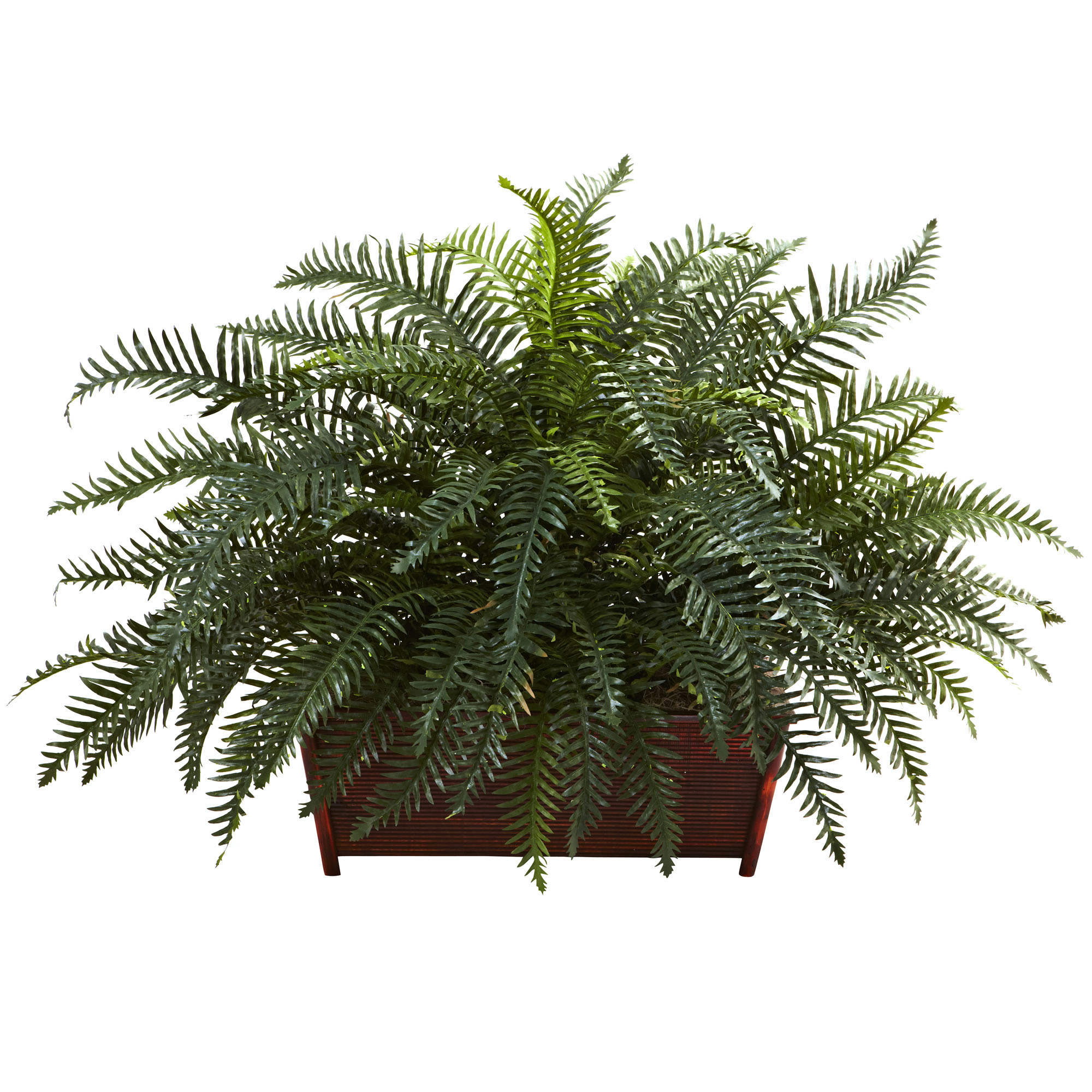 Decorative Indoor Trees 30 Inch Indoor Tropical Garden Arrangement In Decorative Wood