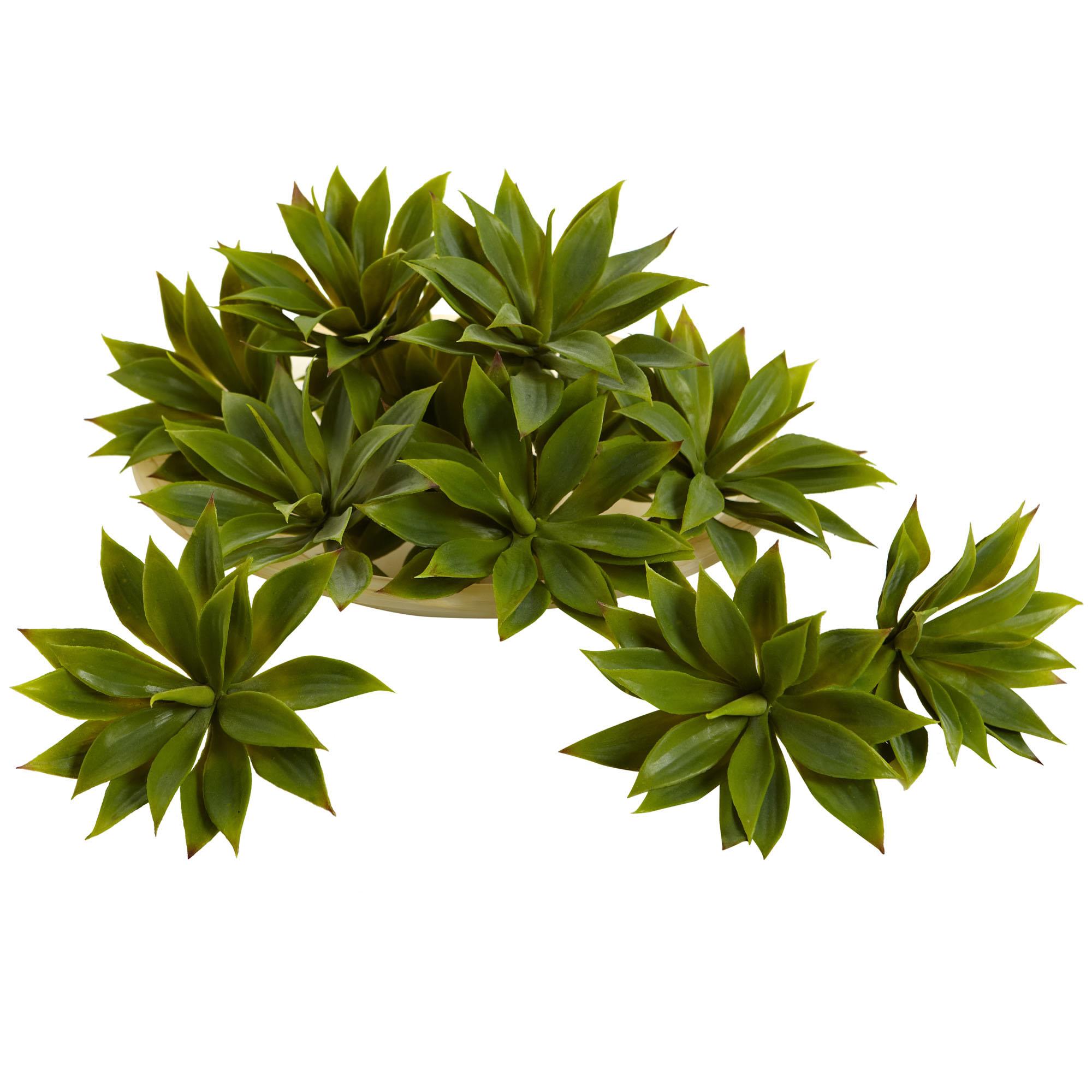 1 Dozen 5 Inch Indoor Silk Mini Agave Succulent Plants