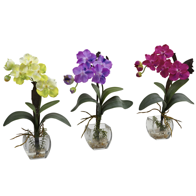 15 Inch Mini Vanda Orchid Arrangement In Decorative Glass Vase Set Of 3 1312 S3